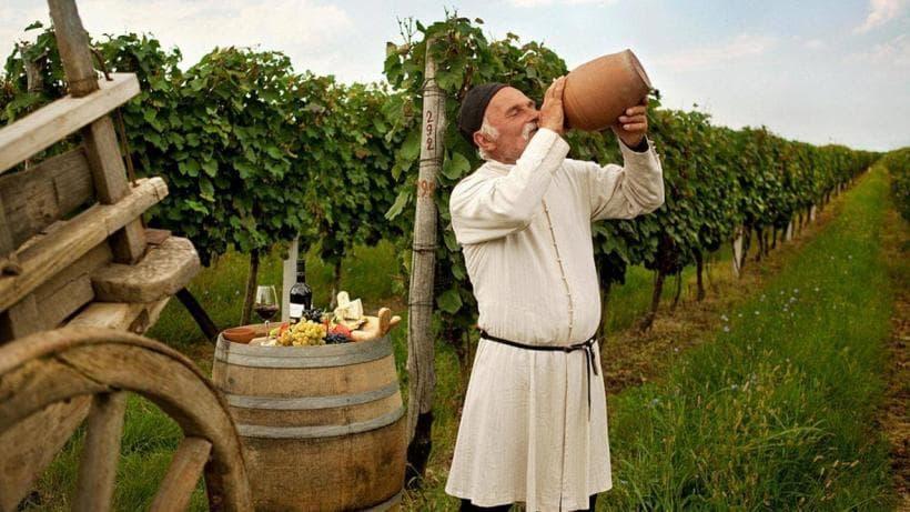 Однодневный винный тур в Кахетию