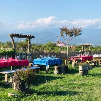 wine tasting tour set up in Ruispiri biodynamic winery in Kakheti georgia