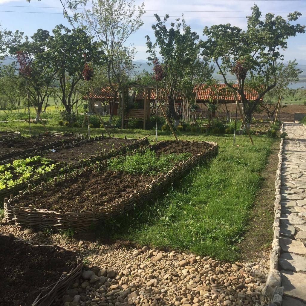 Kitchen-garden on Bazaleti lake during one day tour in Georgia